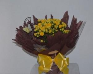 025 - Arranjo de Calandiva plantada em vaso decorado